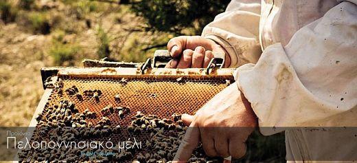 Πελοποννησιακό μέλι: Το Μέλι της Ζωής