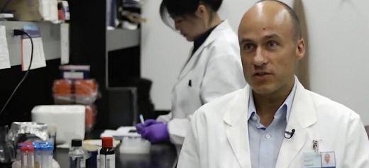 Studies mosquitos which transmit human pathogens