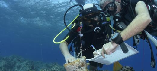 Σημαντικά ευρήματα έφερε στο φως υποβρύχια έρευνα στη Νάξο