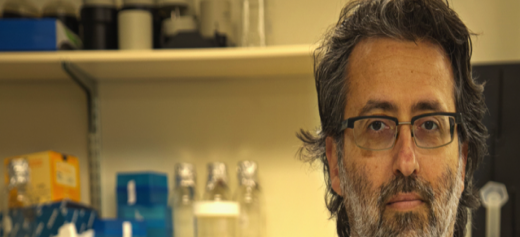 A expert at mosquito viruses such as Zika and dengue fever