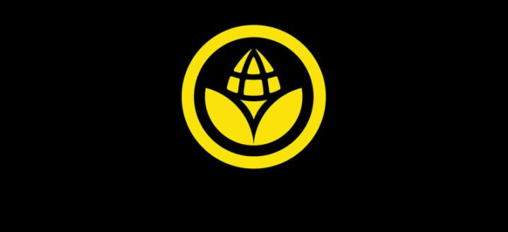 Corn Studio