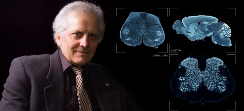 The man who mapped the human brain