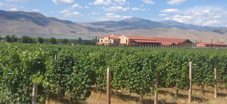 Από το Αμύνταιο στην παγκόσμια αγορά κρασιού