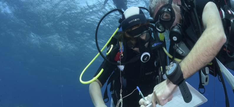 Underwater search in Naxos yields rich finds