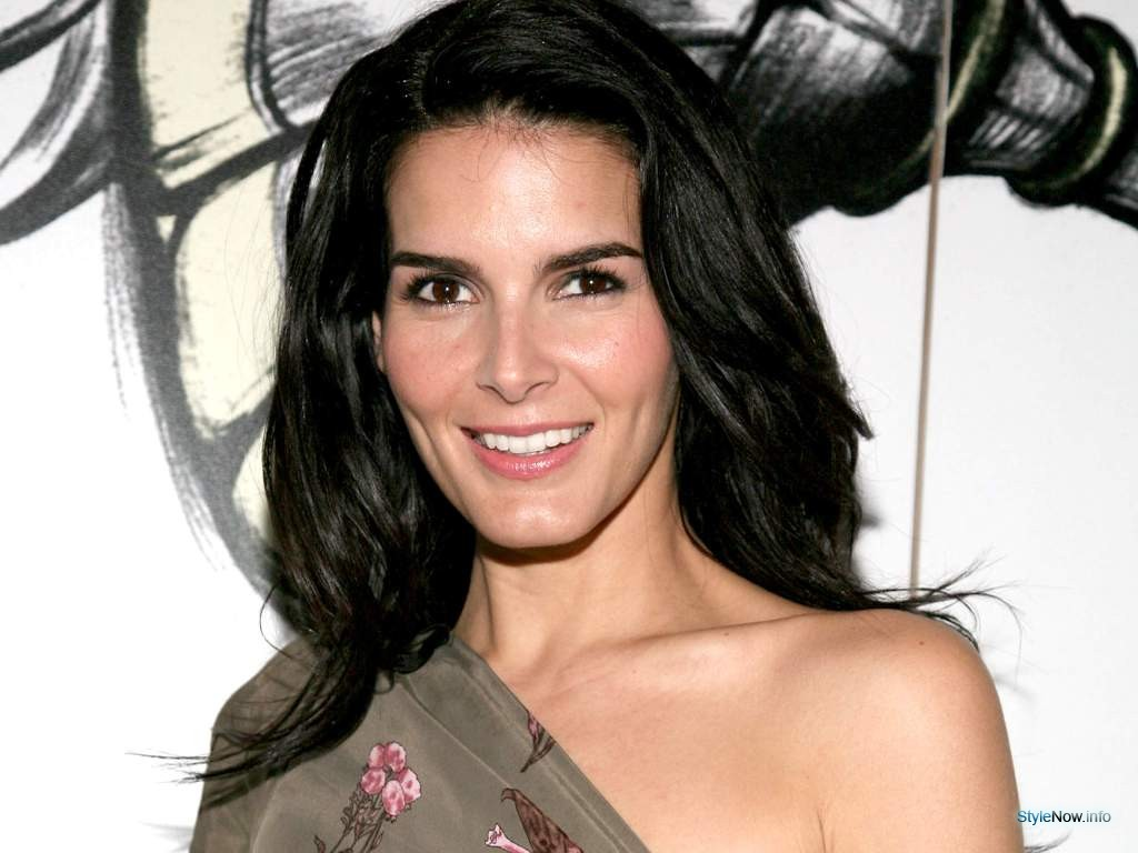 Angie Harmon born August 10, 1972 (age 46) naked (85 foto and video), Sexy, Fappening, Twitter, panties 2019