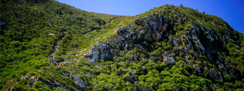 Trails of the Garden Route