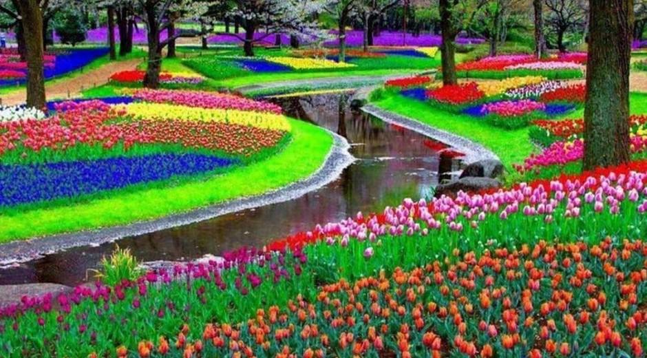 Keukenhof Park, Holland, The Netherlands