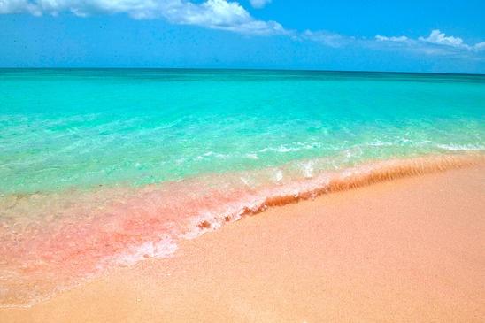 Pink Beaches of Barbuda – Caribbean Sea